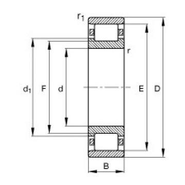 105 mm x 190 mm x 36 mm  FAG N221-E-M1 Rolamentos cilíndricos