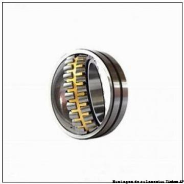 Backing ring K85095-90010        Conjuntos de rolamentos integrados AP