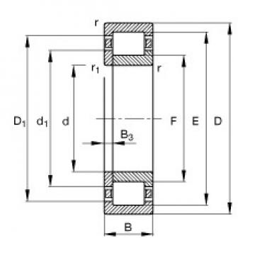 55 mm x 100 mm x 25 mm  FAG NUP2211-E-TVP2 Rolamentos cilíndricos