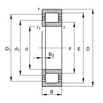 95 mm x 170 mm x 32 mm  FAG NUP219-E-TVP2 Rolamentos cilíndricos